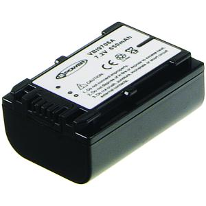 HDR-XR550VE Batteria (2 Celle)